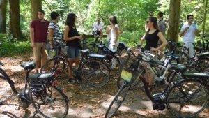 Vélo en forêt de Saint-Germain