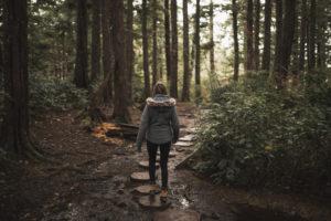 forêts saint germain boucles de seine