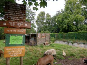 Mini-ferme en lisière de forêt
