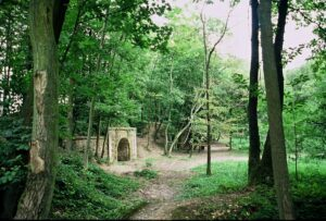 le vallon de chevaudeau, une balade à faire en forêt de Marly